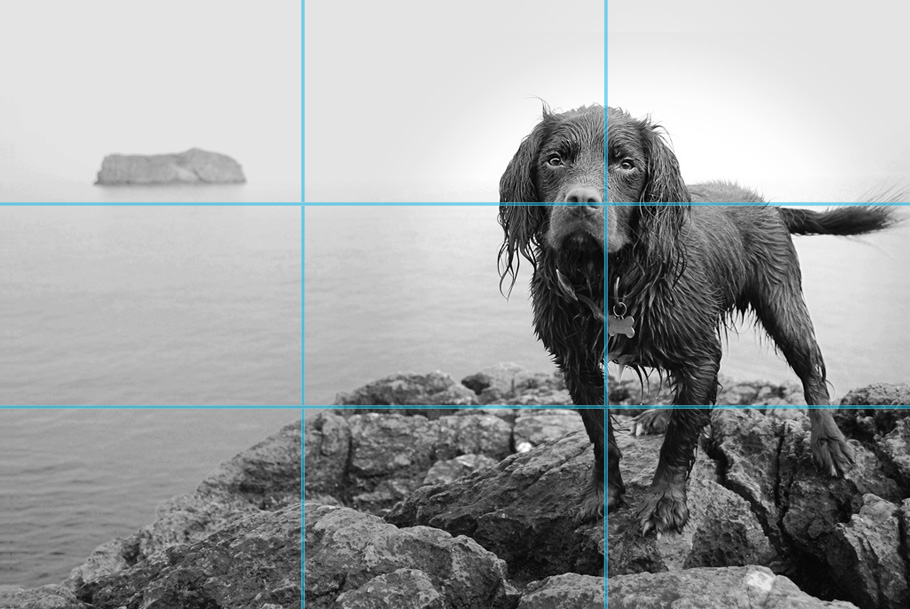 photography tips rule of thirds